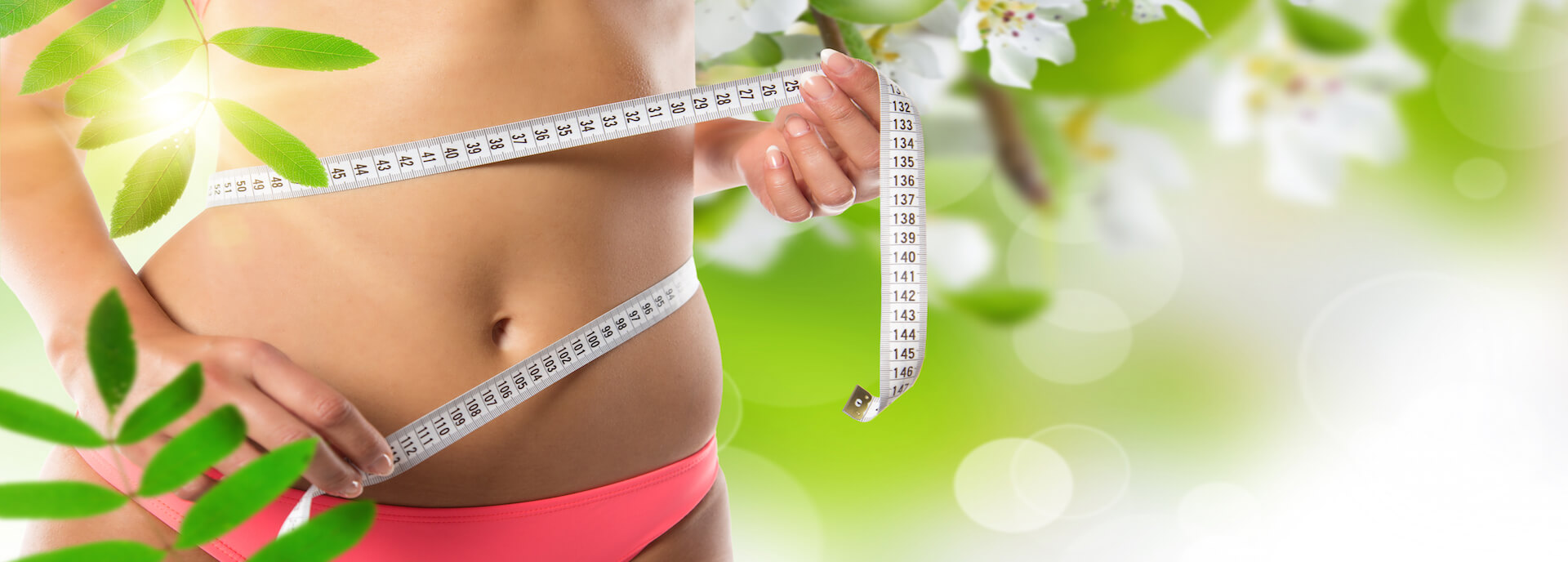 wholistic weight loss
