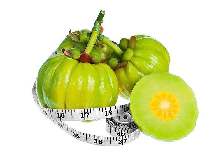 dr oz garcinia cambogia and apple cider vinegar